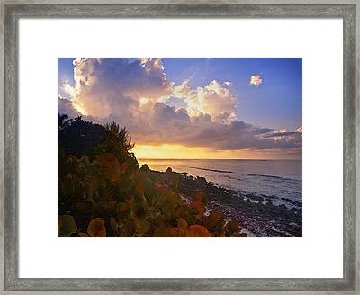 Sunset On Little Cayman Framed Print by Stephen Anderson