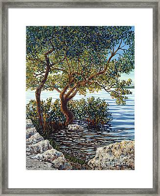 Sunset On Morada Bay Framed Print by Danielle  Perry