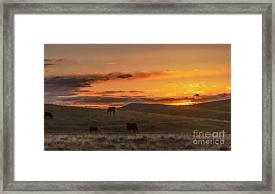 Sunset On Open Range Framed Print