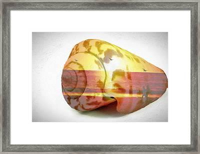 Sunset On Sea Shell Framed Print