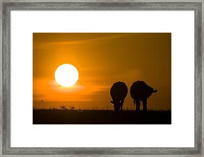 Framed Print featuring the photograph Sunset On The Flint Hills by Scott Bean