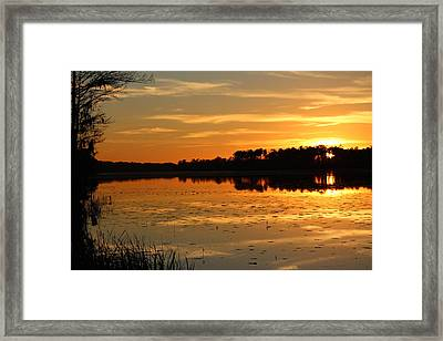 Sunset On The Lake Framed Print by Cynthia Guinn