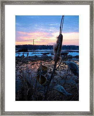 Sunset On The Pond Framed Print by Zafer Gurel