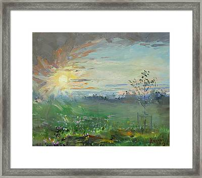 Sunset Over A Field Of Wild Flowers Framed Print by Ylli Haruni