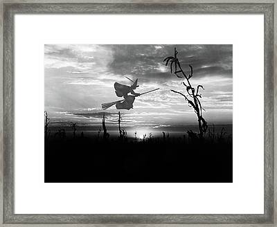Sunset Over Cornfield With Silhouette Framed Print