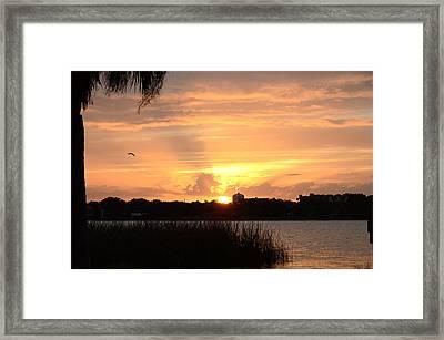 Sunset Over Lake Semniole Framed Print by Julie Cameron