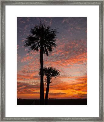 Sunset Over Marsh Framed Print by Patricia Schaefer