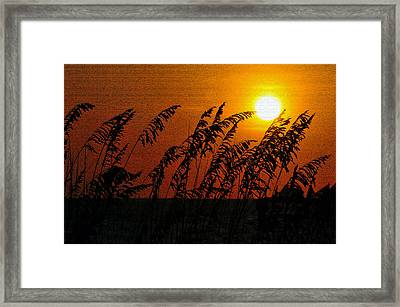 Sunset Over Sea Oats Antique Style A Framed Print by David Lee Thompson