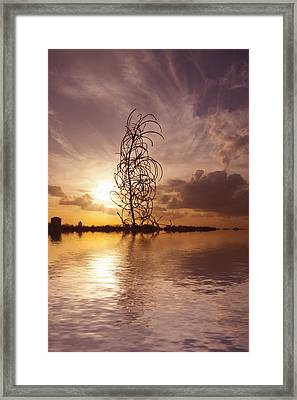 Sunset Over The Lake  Framed Print by David French
