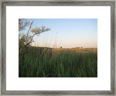 Sunset Over The Marshlands Framed Print