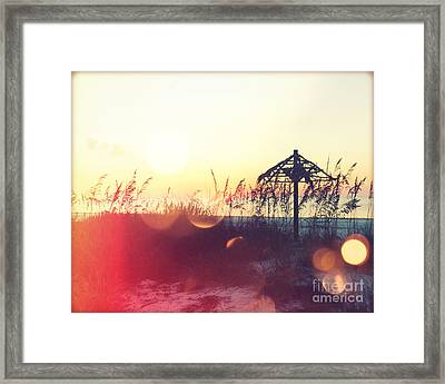 Sunset Palm IIi Framed Print by Chris Andruskiewicz