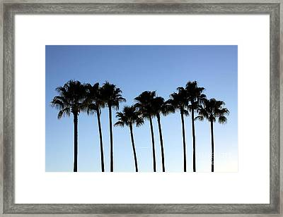 Framed Print featuring the photograph Sunset Palms by Chris Thomas