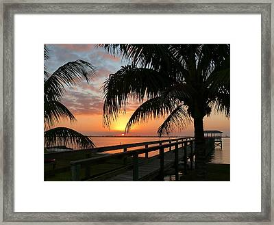 Framed Print featuring the photograph Sunset Palms by Elaine Franklin