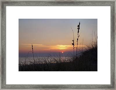 Sunset Paradise Framed Print by Betsy Knapp