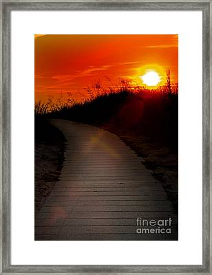 Sunset Path Framed Print