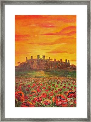 Sunset Poppies Framed Print by Jodi Monahan