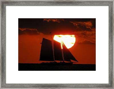 Key West Sunset Sail 5 Framed Print by Bob Slitzan