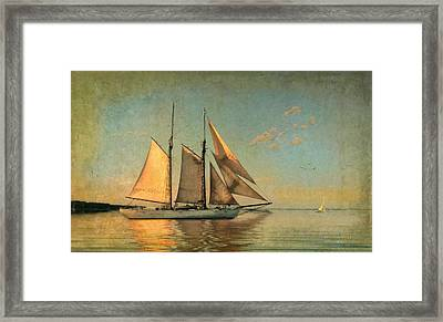 Sunset Sail Framed Print by Michael Petrizzo
