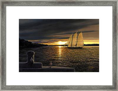 Sunset Sails Framed Print by Doug Kreuger