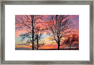 Sunset Shadow Framed Print