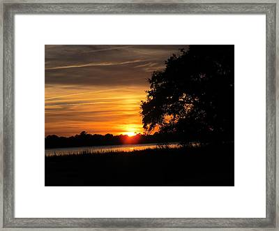 Framed Print featuring the photograph Sunset Shadowed Oak by Joetta Beauford