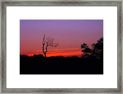 Sunset Silhouette 2 Framed Print