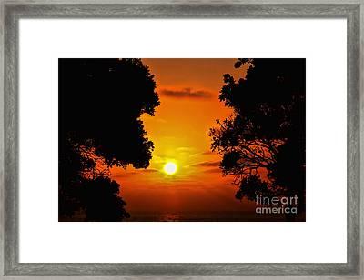 Sunset Silhouette By Diana Sainz Framed Print by Diana Sainz