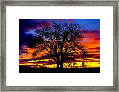 Framed Print featuring the photograph Sunset Silhouette by Greg Norrell