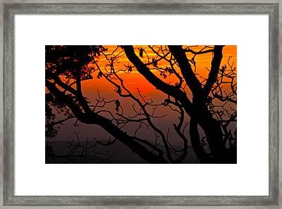 Sunset Silhouette Framed Print by John Roberts