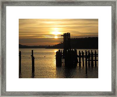 Sunset Silhouette Framed Print by John Rossman