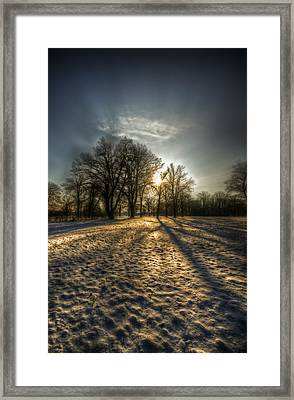 Sunset Snow Trees Framed Print by Nathan Wright