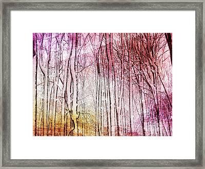 Sunset Snow Twigs Framed Print