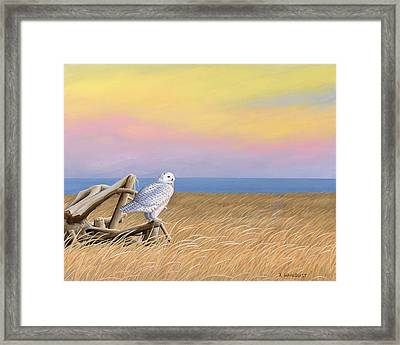 Sunset Snowy Owl Framed Print by Kirsten Wahlquist