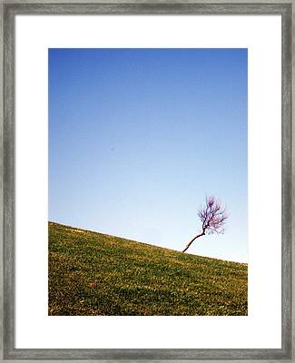 Sunset Solitary Framed Print by Michel Mata