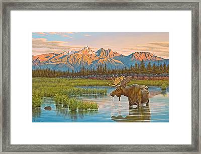 Sunset Solitude     Framed Print by Paul Krapf