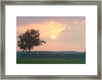 Sunset Sorbet Framed Print by Sarah Boyd