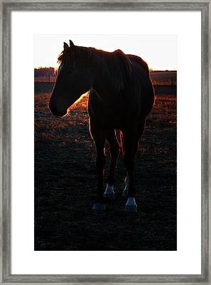Framed Print featuring the photograph Sunset Splendor by Robert McCubbin