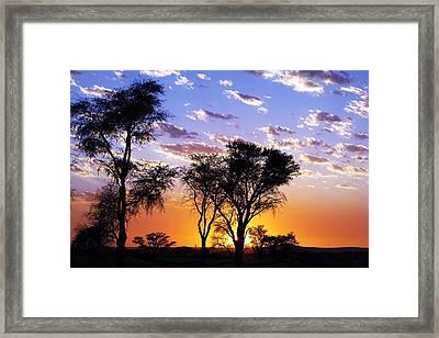 Sunset Splendour Framed Print by Liudmila Di
