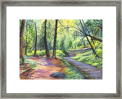 Sunset Stroll  Framed Print by Carol Wisniewski