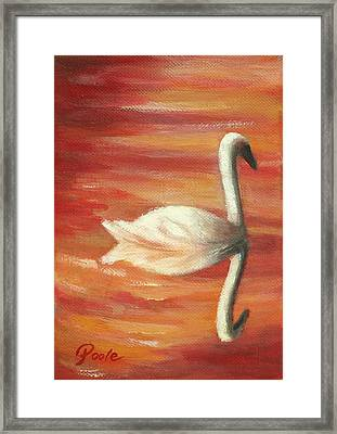 Sunset Swan Framed Print