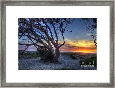 Sunset Swing Framed Print