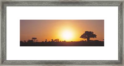 Sunset, Tarangire, Tanzania, Africa Framed Print by Panoramic Images