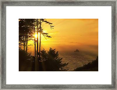 Sunset Thru The Trees Framed Print