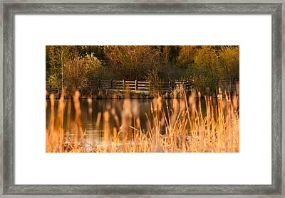 Sunset Tranquility Framed Print by Valerie Pond