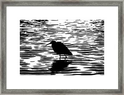 Sunset With A Wading Bird Silhouette Framed Print by Ben and Raisa Gertsberg