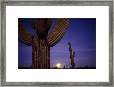 Sunset With Moonise Behind Saguaro Cactus In Desert Southwest Ar Framed Print