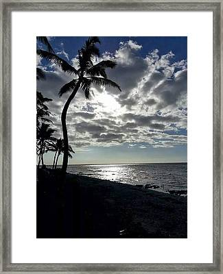 Sunset With Palm Trees Framed Print by Pamela Walton
