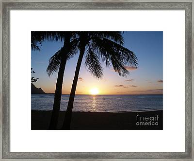 Sunset With Palms Framed Print by The Harrington Collection