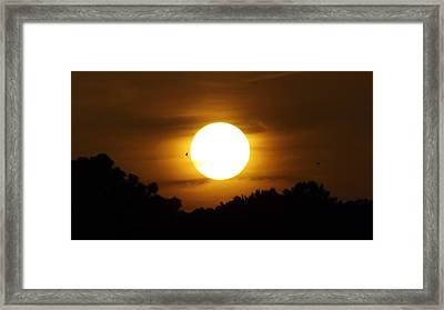 Sunset With Soaring Birds Framed Print by Keegan Hall