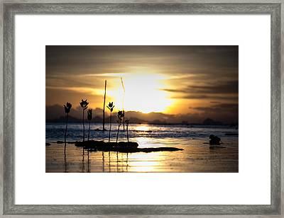 Sunset Framed Print by Zestgolf